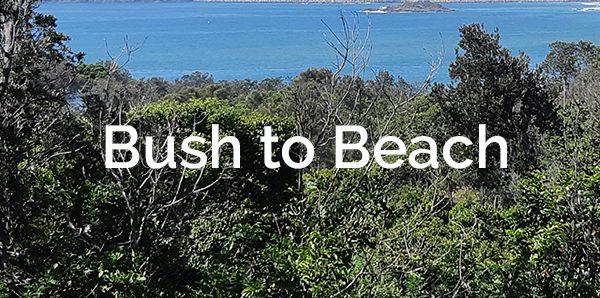Bush to Beach Coffs Harbour Landcare Newsletter